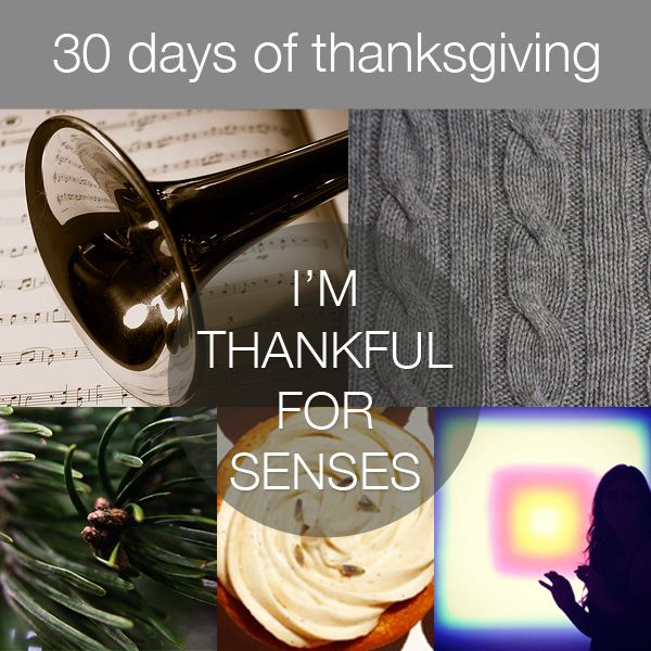 30 Days of Thanksgiving: Senses via Bits of Beauty